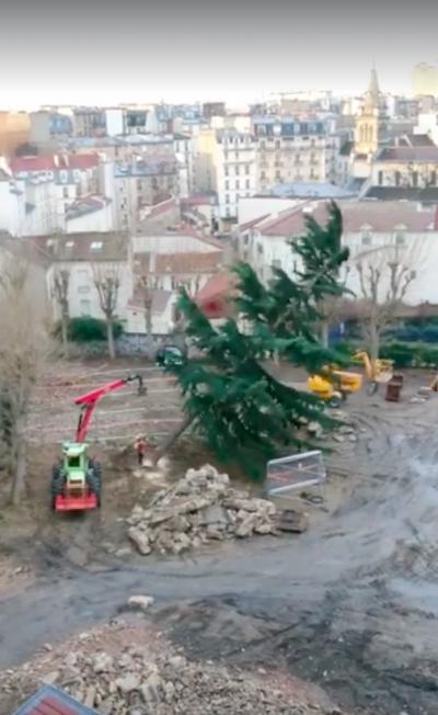 Un cèdre de l'Himalaya et des dizaines d'arbres ont été abattus le 16 février 2019 pour un projet immobilier contre lequel SOS Paris et plusieurs associations se sont battus.